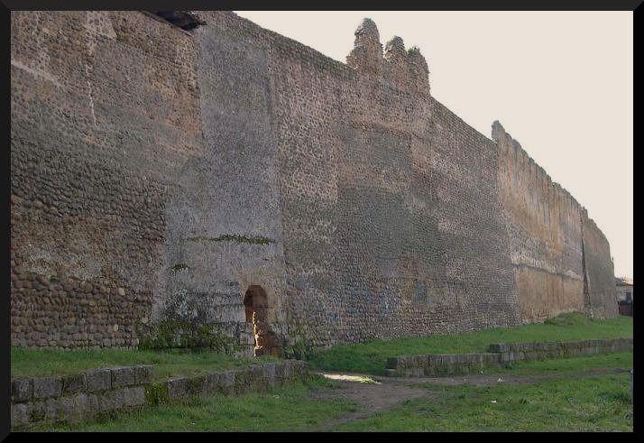 muralla de mansilla de las mulas