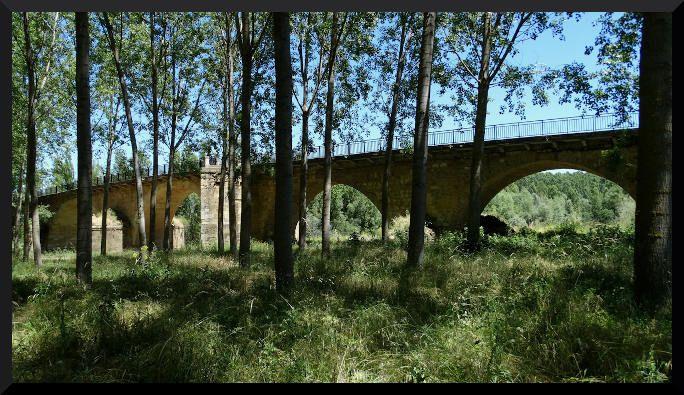 Puente de mansilla de las mulas