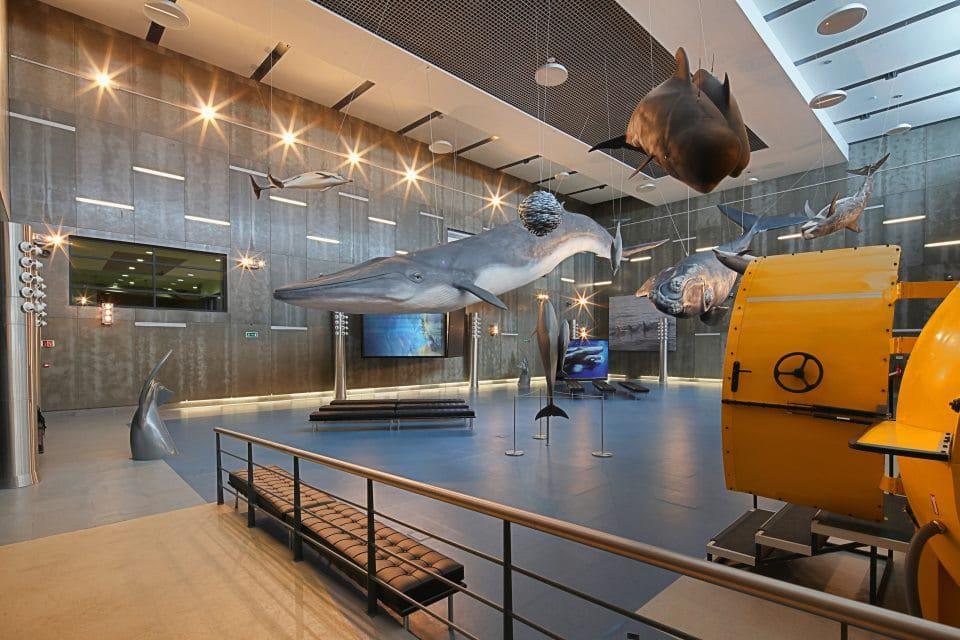 Museo de las Ballenas de Madeira
